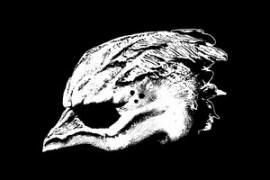 Legend Of The Seagullmen - Legend Of The Seagullmen