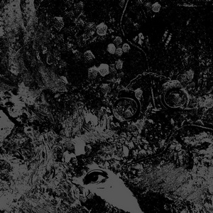 Primitive Man/Unearthly Trance – Split