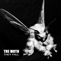 The Moth – They Fall