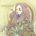 Wildlights - Wildlights