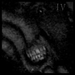 Into Violence - Into Violence
