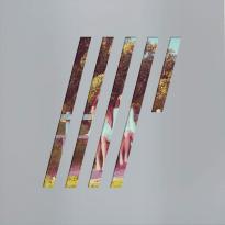 Steven Wilson – 4 ½