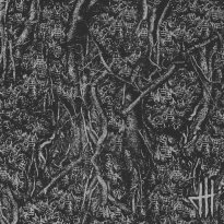 Dark Habits – Scaphism