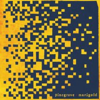 Pinegrove – Marigold