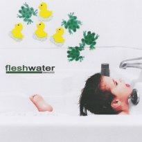 Fleshwater – Demo2020