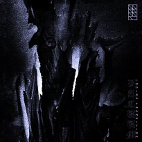 DSKNT – Vacuum γ-Noise Transition
