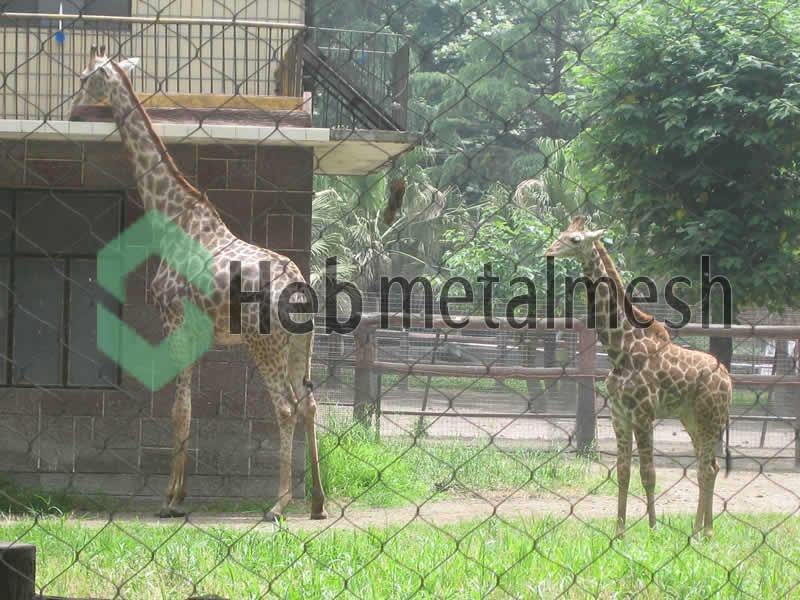 deer enclosure fence netting