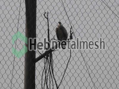 Factory supplies for eagle exhibit fencing mesh, ealge enclosures mesh