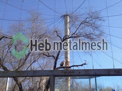 wire mesh for eagle cage mesh, eagle perimeter netting, eagle roof netting supplies