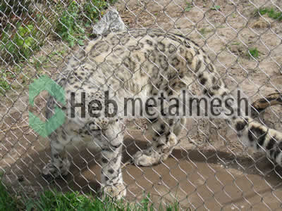 stainless steel mesh for leopard protection netting, leopard barrier mesh