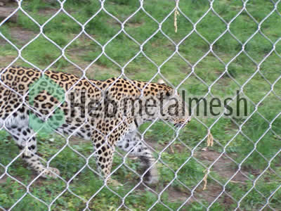 mesh for leopard control mesh, leopard enclosure mesh, leopard cover manufacturer