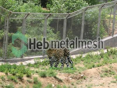 leopard exhibit design, zoo leopard enclosures plans, zoo leopard mesh supplies