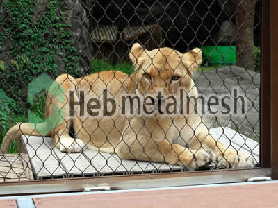 zoo enclosures for lion exhibit, lion protection netting, lion barrier netting for sale