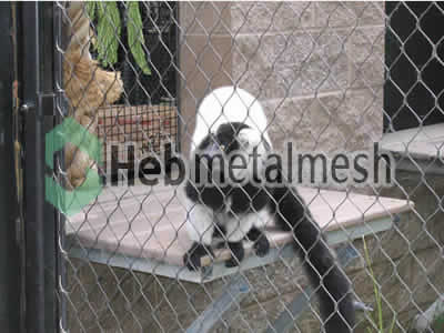 Factory supplies for monkey exhibit fencing mesh, monkey enclosures mesh