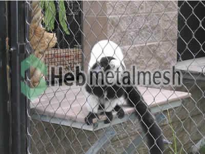 Factory supplies for monkey exhibit fencing mesh, monkey enclosures mesh
