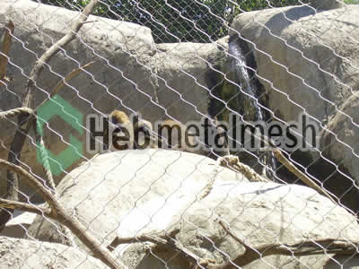 stainless steel mesh for monkey protection netting, monkey barrier mesh