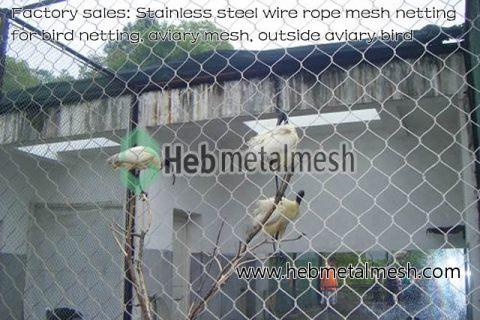 Stainless steel wire rope mesh netting for bird netting, aviary mesh, outside aviary bird
