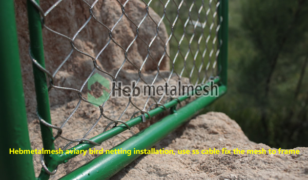 Bird netting fence, aviary mesh, wire rope mesh fence for