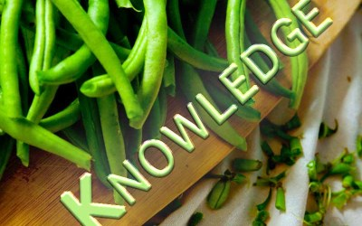 22nd May 2020: Our Daily DeLIGHT~6th Day-Knowledge