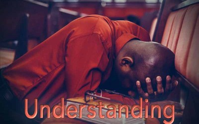 18th May 2020: Our Daily deLIGHT~2nd Day-Understanding