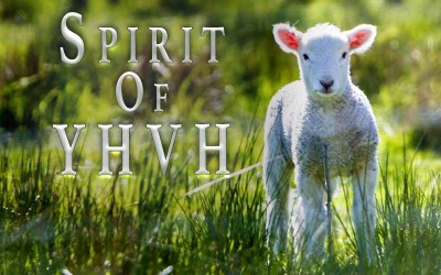 10th June 2020: Our Daily deLIGHT~4th Day-Spirit of YHVH