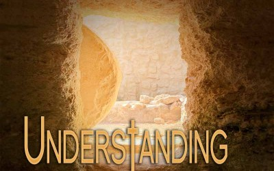 15th June 2020: Our Daily deLIGHT~2nd Day-Understanding