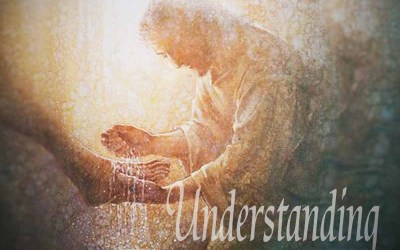 8th June 2020: Our Daily deLIGHT~2nd Day-Understanding