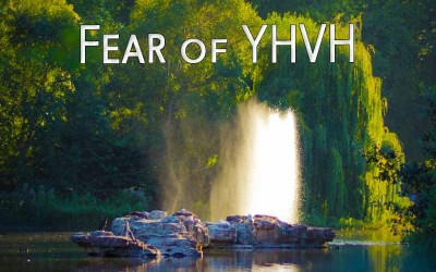 1st August 2020: Our Daily deLIGHT~7th Day-Fear of YHVH