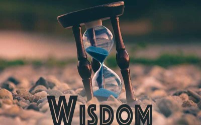 2nd August 2020: Our Daily deLIGHT~1st Day-Wisdom