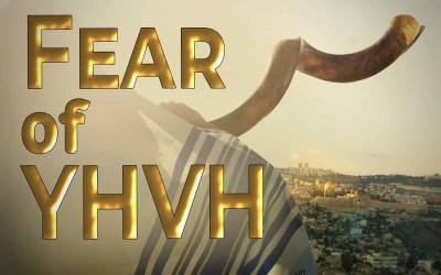 19th September 2020: Our Daily deLIGHT~7th Day-Fear of YHVH