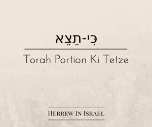 this weeks torah portion, Torah Portion, torah portion this week, weekly torah portion,deuteronomy 21, polygamy, polygamy in the bible, more than one wife,