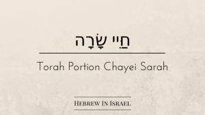 ancient code, cave of machpelah, cave of the patriarchs, chayei sarah, ephron, hittites, the hittites, this weeks torah portion, torah portion this week, torah portions, weekly torah portion