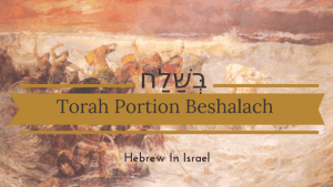beshalach, Parashat Beshalach, Moses, red sea, this weeks torah portion, Torah Portion, weekly torah portion