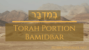 BAMIDBAR, TORAH PORTION BAMIDBAR, TORAH PORTION THIS WEEK, WEEKLY TORAH PORTION