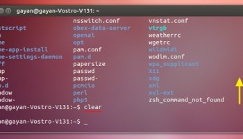 Terra' Is a new Terminal Emulator with 'dropdown' Support