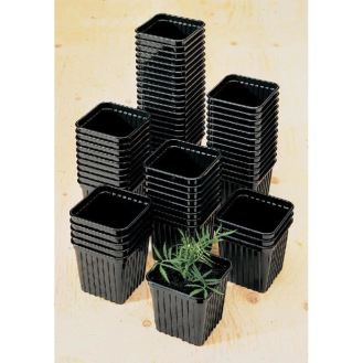 9 and 7CM SQUARE POTS