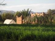 Impressionen Marokko (Foto Joe Haider)