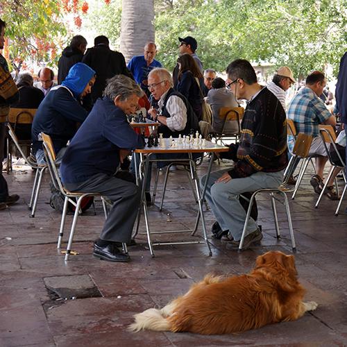 Chili - Santiago / Plaza de Armas - Joueurs d' échecs
