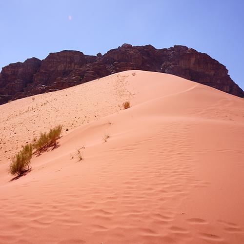 Wadi Rum - Dune