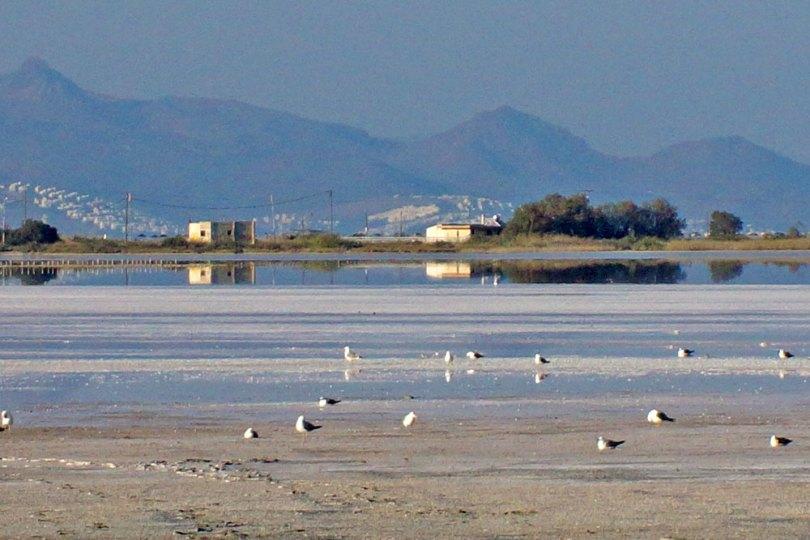 Grèce Kos - Lac salé d'Alikis