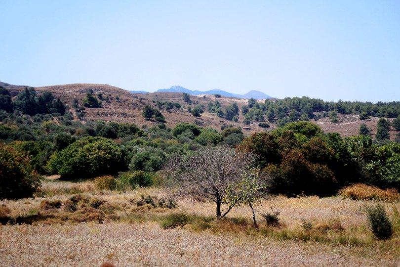 Grèce Kos paysage