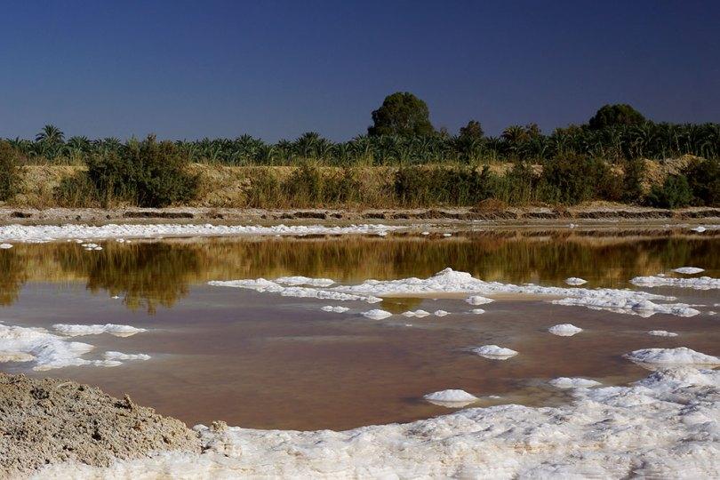 Egypte - Al-Bahariya : lac salé