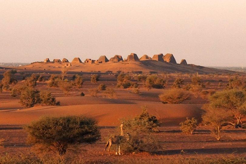 Soudan - Nécropole de Méroé au lever du jour