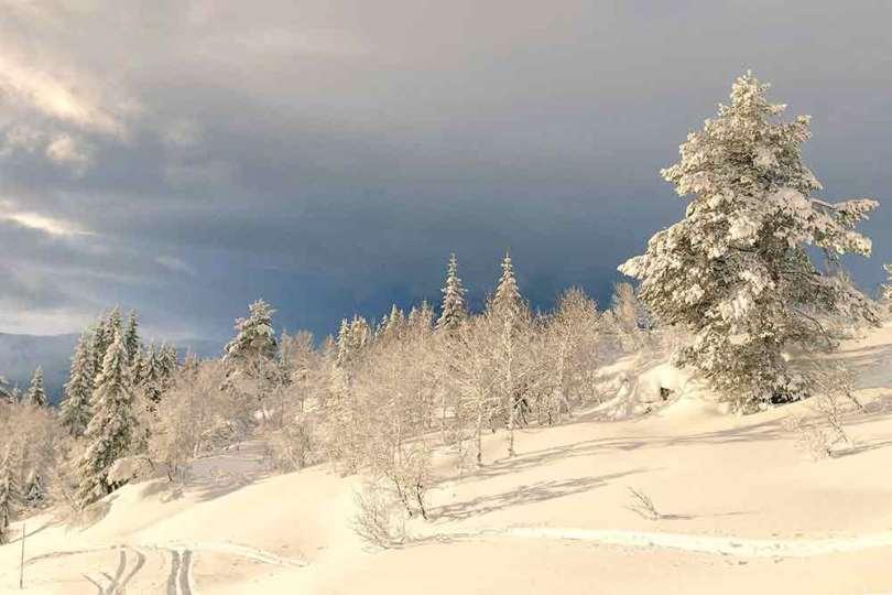 Norvège - Voss
