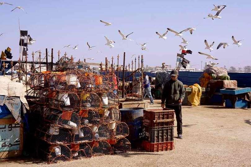 Essaouira - Sur le Port