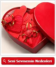 seni_neden_seviyorum_kalp_kutu