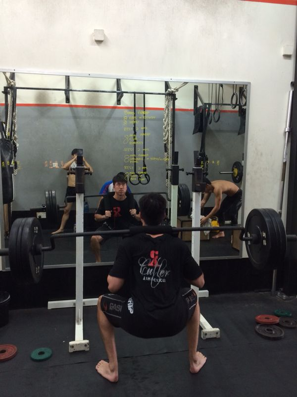 safety bar squat iron fitness singapore