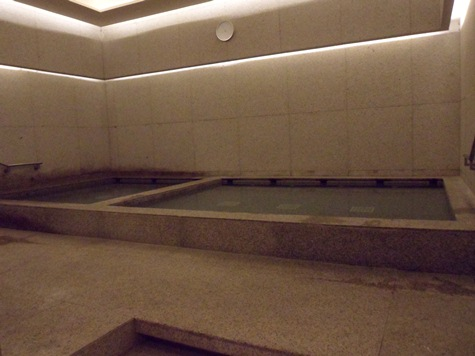 Damai Spa Hot Tub Plunge Pool
