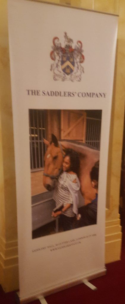 Saddlery Competition #5