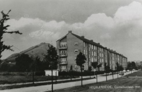 Bron: Rijckheyt.nl | Corneliuslaan. Links de steenberg van de Oranje-Nassaumijn III 1954